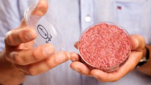 Mosa Meat: Merck investiert in Start-up für Laborfleisch