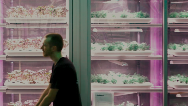 Infarm: Indoor-Farming-Start-up erhält 100 Millionen Dollar